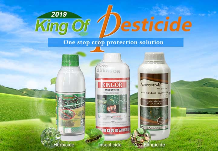 China agrochemicals pesticides manufacturer & supplier